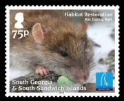 The 75p stamp shows a rat taking a piece of the specially designed bait.