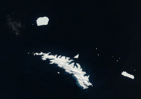 Vast icebergs around South Georgia seen from space. Image Earth Observatory