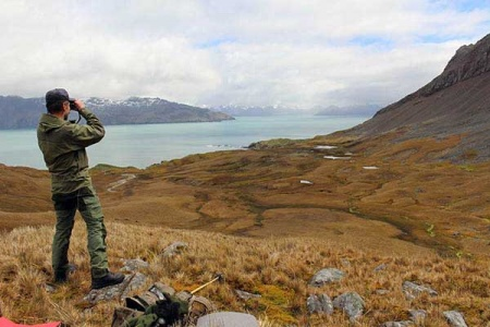 One of the marksmen searching for any remaining reindeer on the Barff Peninsula. Photo SNO.