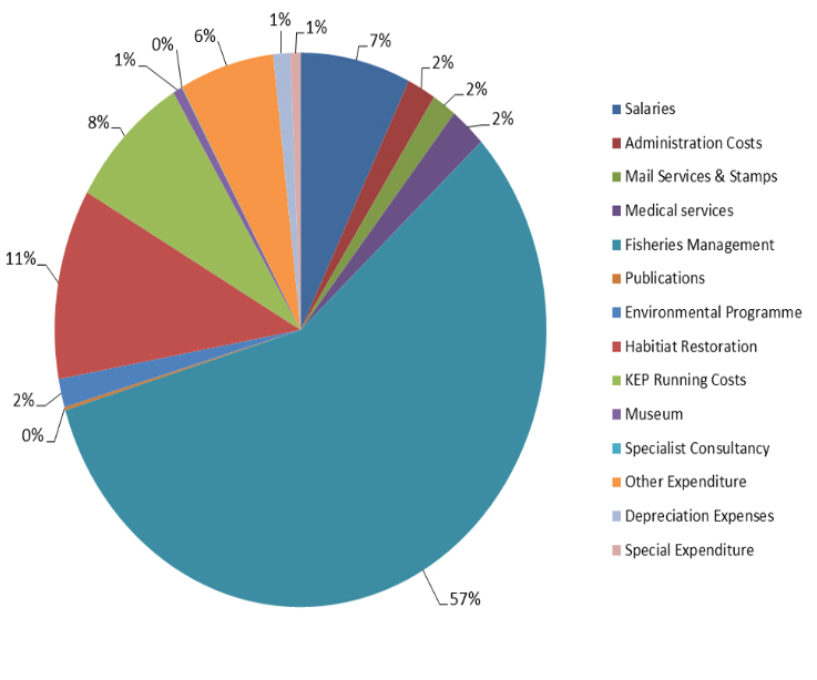 Pie chart showing GSGSSI expenditure in 2013.