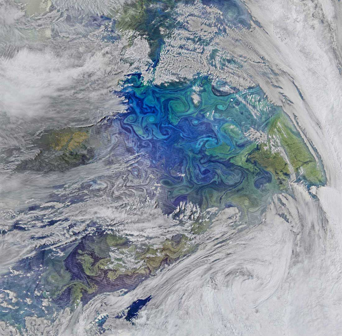 14Swirls of planktonic blooms show in this infrared image taken by NASA of the sea between the Falkland Islands and South Georgia.