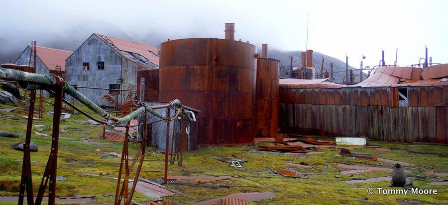 OilWaste