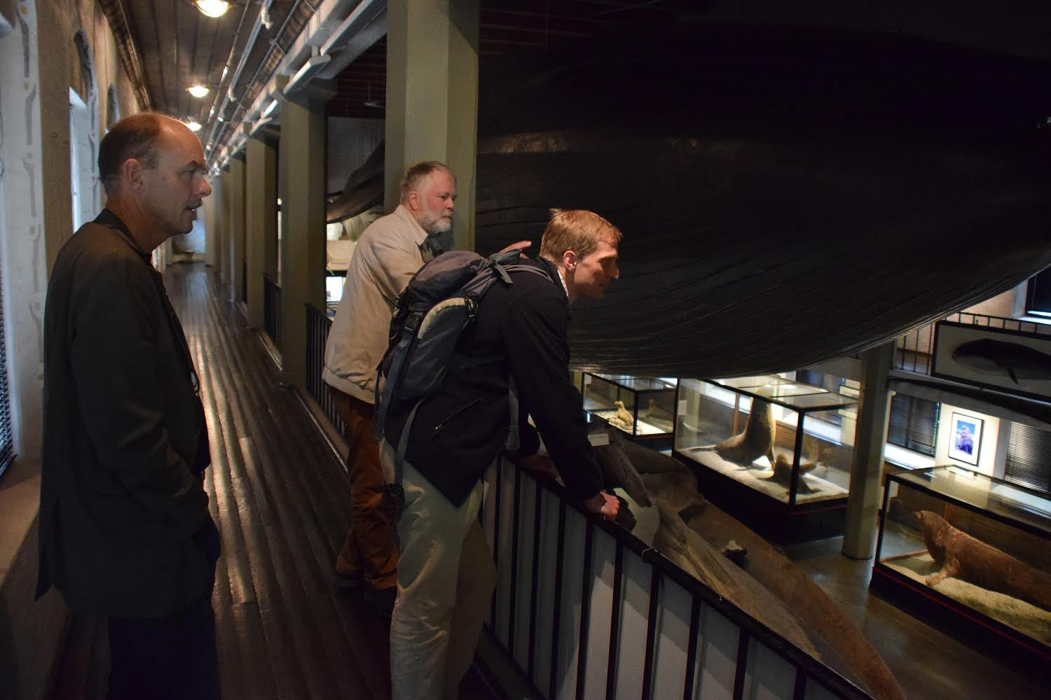 A guided tour of the Sandefjord Whaling Museum, with Stig Tore Lunde.
