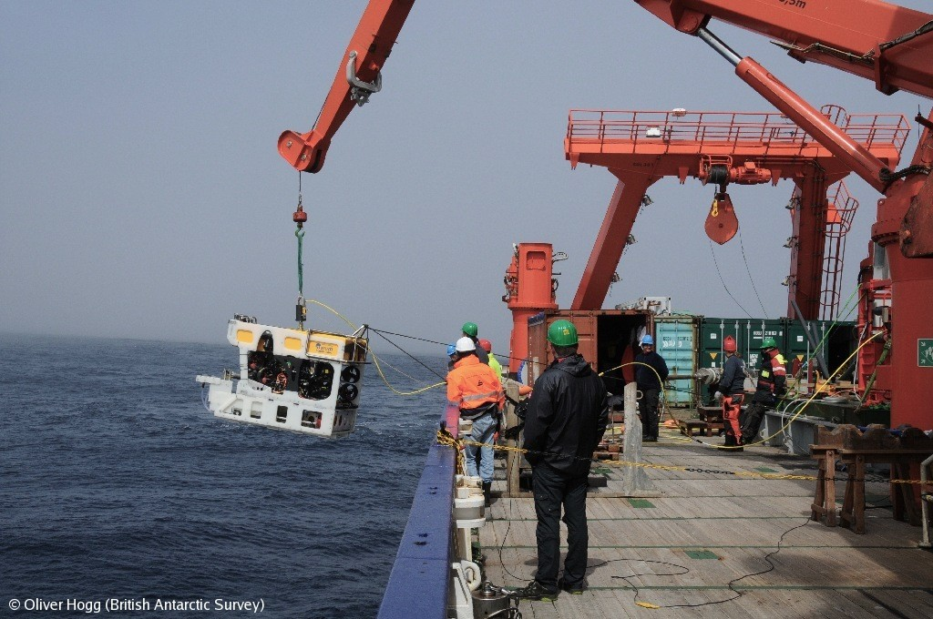 Deploying the ROV (remotely operated vehicle) SQUID from RV Meteor near South Georgia.