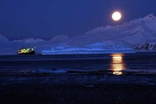 Reefer Director in CEB at night with large iceberg. Photos Emma Jones