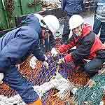 fisheriesThumb